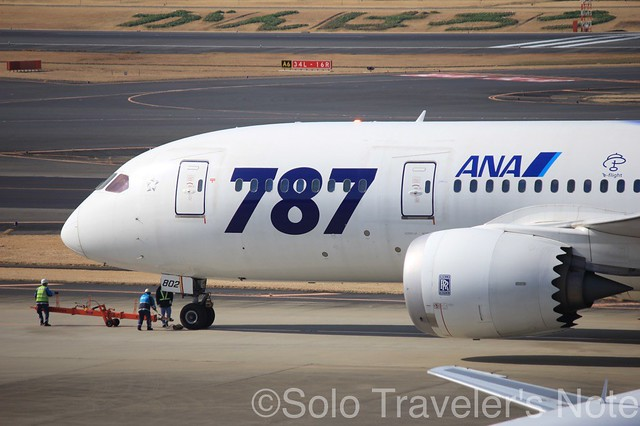 ANA's Special 787 Livery07