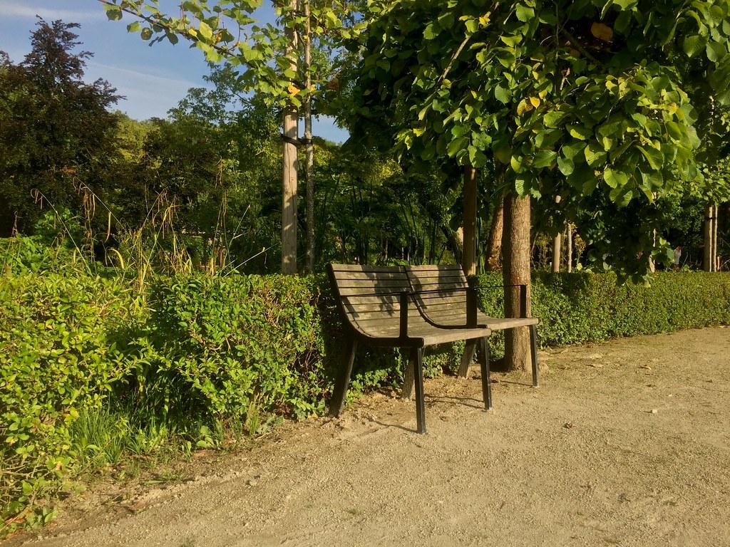 Vrijbroekpark in summer