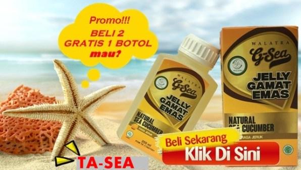 Jelly Gamat Rasa Jeruk