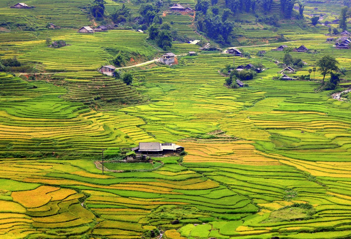 The north western frontier of Sa Pa in Vietnam