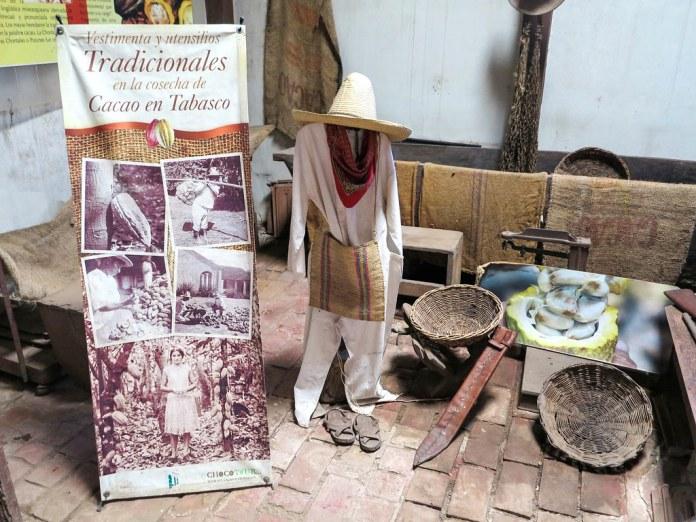 Tour de chocolate en Tabasco