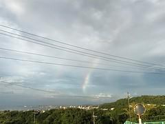 珍しく虹が