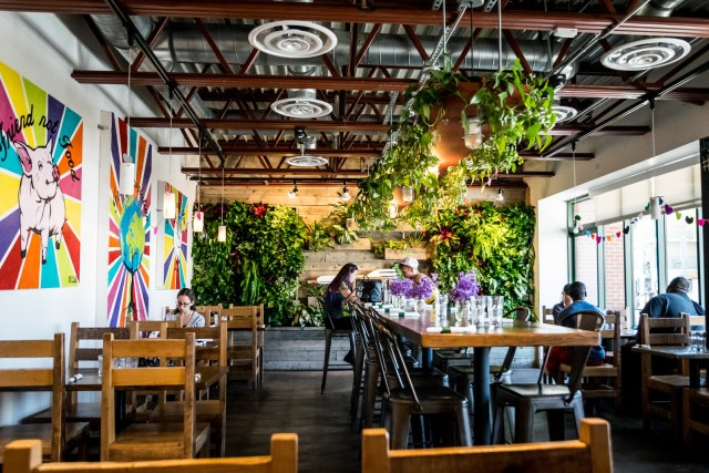 vegenation is lush with plants, serving delicious vegan fare in the heart of downtown