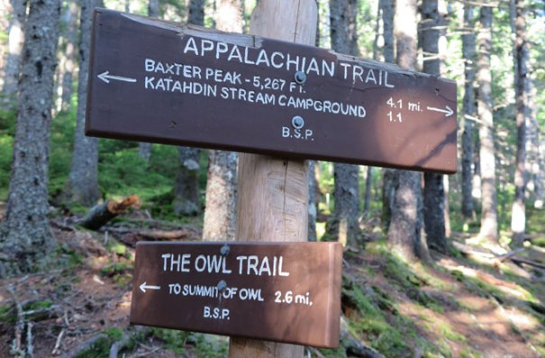 The Owl Trail Sign