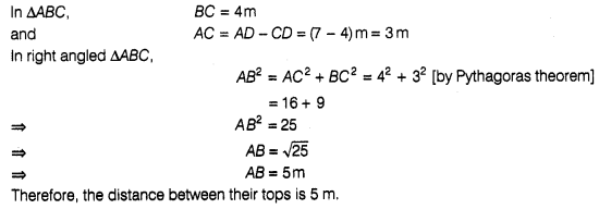 ncert-exemplar-problems-class-7-maths-triangles-13s1
