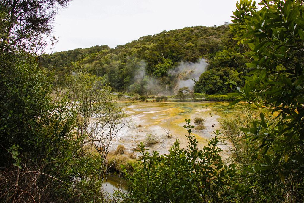 naturen på New Zealand