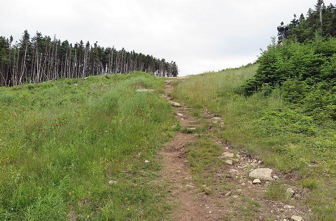 Saddleback Resort Hike Climb-Rangeley