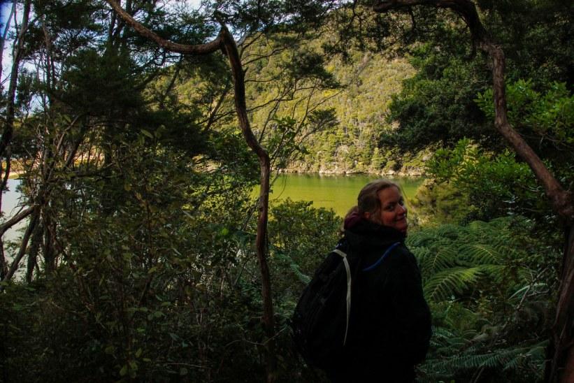 de bedste vandreture i New Zealand