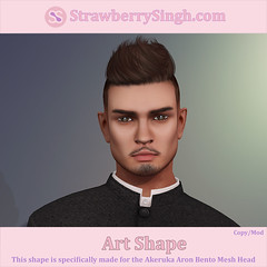 StrawberrySingh.com Art Shape