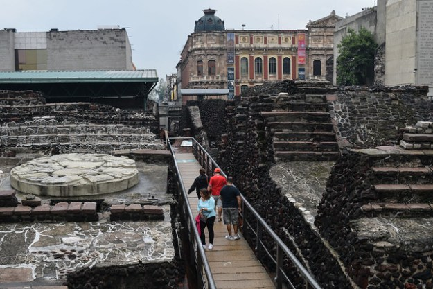 Cat walk through Templo Mayor Ruins