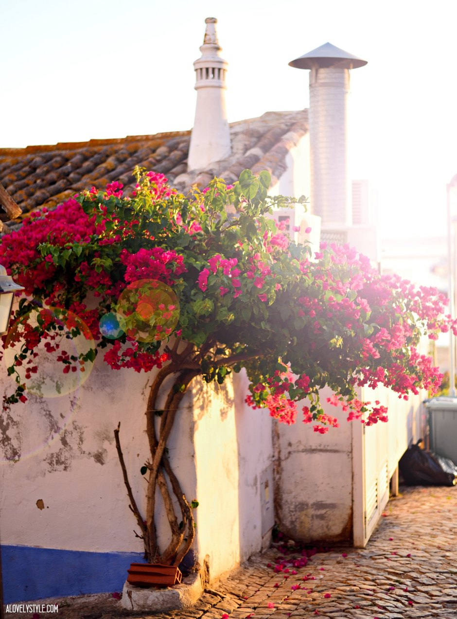 alvor-algarve-travel-blogger-portugal-highlights-holidays-summer-travelblogger-london (4)