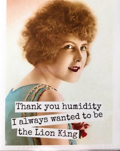 Humidity & Lion King
