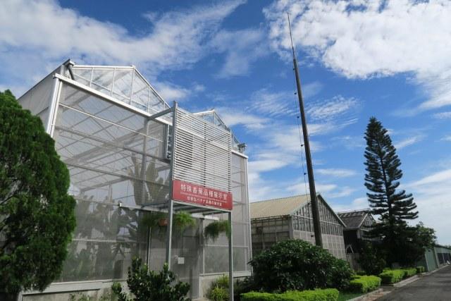 台灣香蕉科技園區 (22)