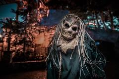 Hollow - Scarecrow