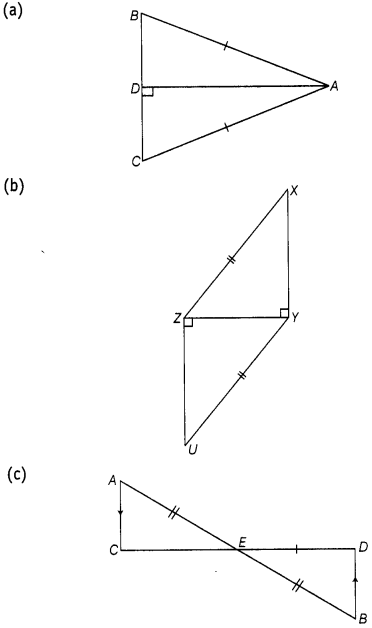 ncert-exemplar-problems-class-7-maths-triangles-135