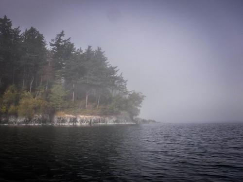 Samish Island Paddling in Fog-29