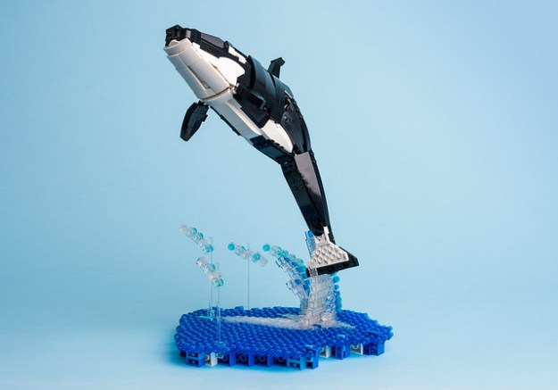 how to make a killer whale model out of clay
