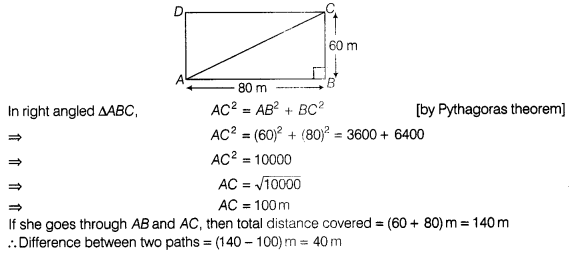 ncert-exemplar-problems-class-7-maths-triangles-114s