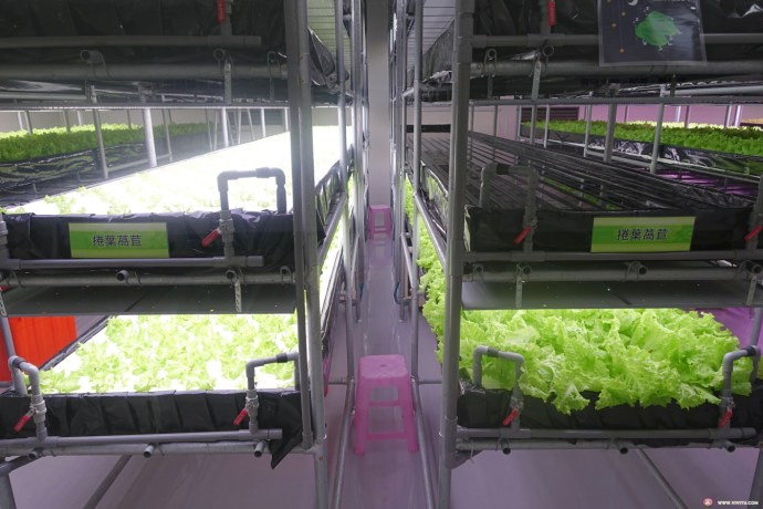 [三義旅遊]雅聞香草植物工廠~三義交流道附近.入園免收門票.以香草植物為主的觀光工廠 @VIVIYU小世界