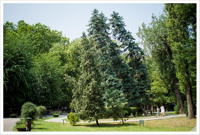 Bucarest-106