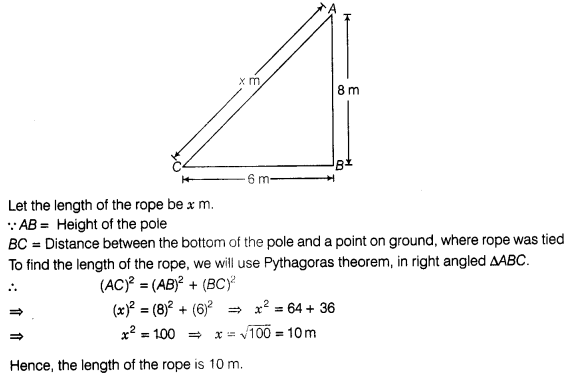 ncert-exemplar-problems-class-7-maths-triangles-139s
