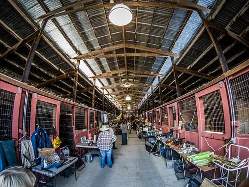 Skagit County Yard Sale-034