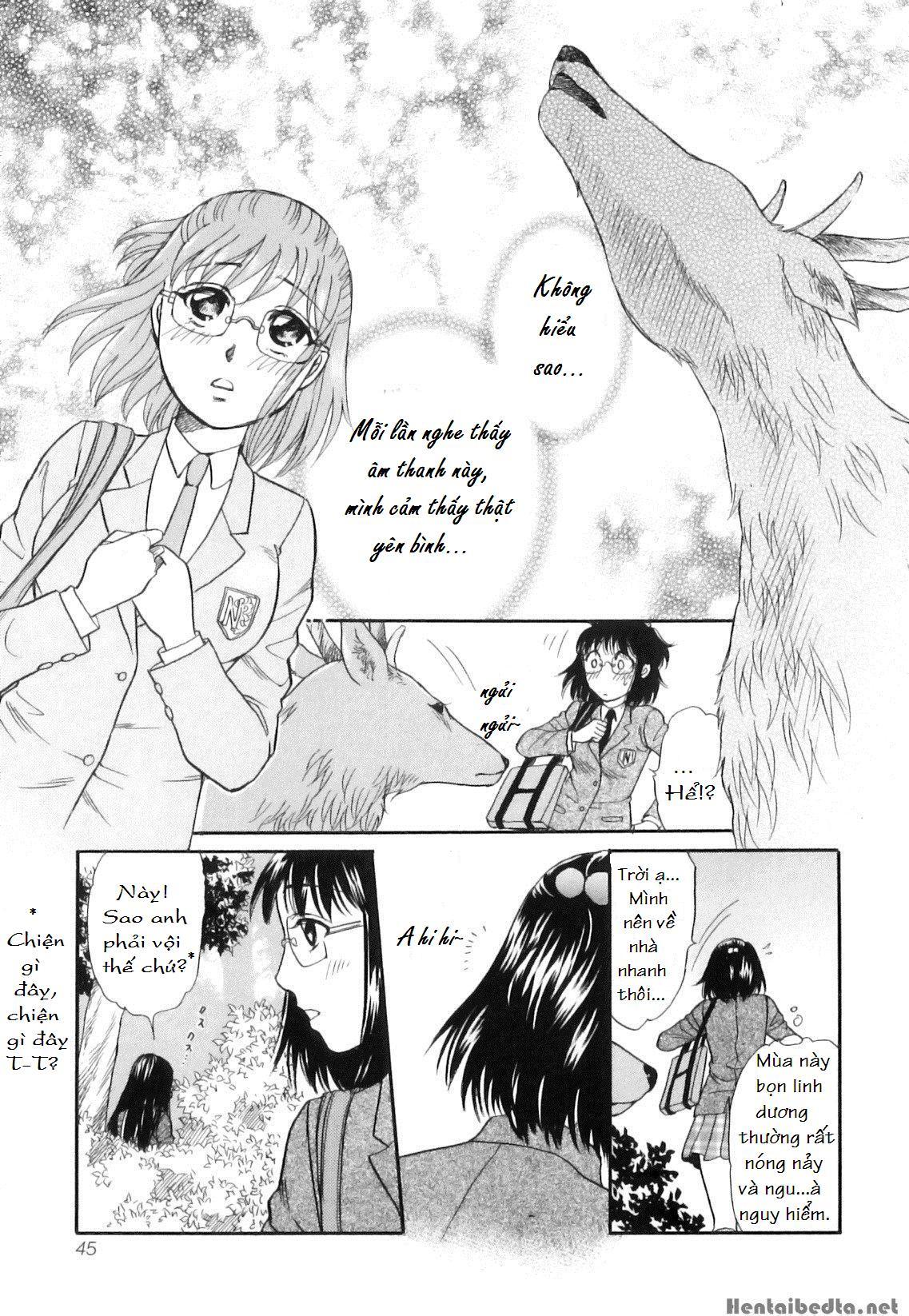 Hình ảnh  in Shoujo-tachi no Yukue ~Shishigami no Mori