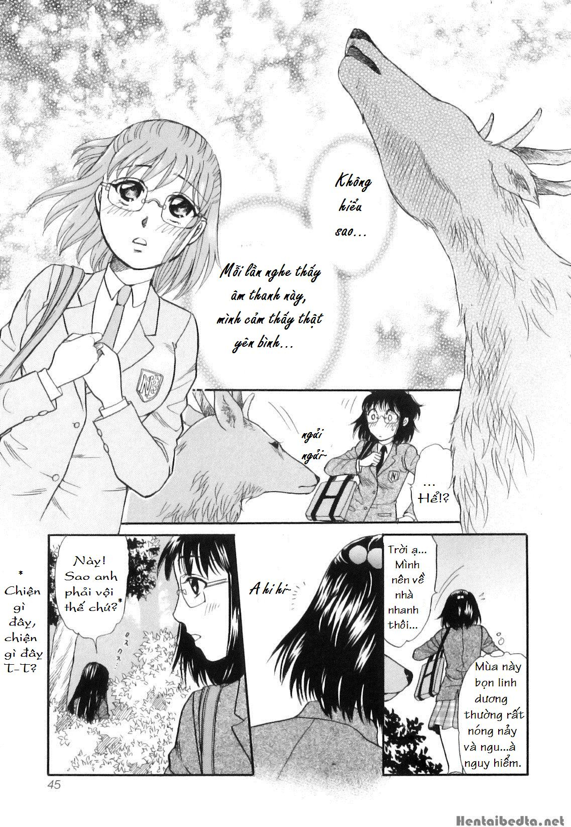 Hình ảnh  trong bài viết Shoujo-tachi no Yukue ~Shishigami no Mori