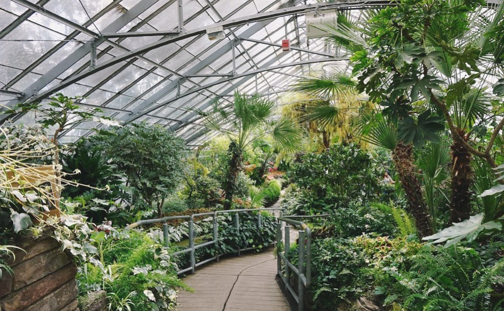 greenery in the city | prettynaive