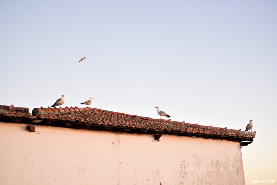 alvor-algarve-travel-blogger-portugal-highlights-holidays-summer-travelblogger-london (8)