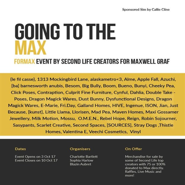 Going to the Max Fundraiser Poster