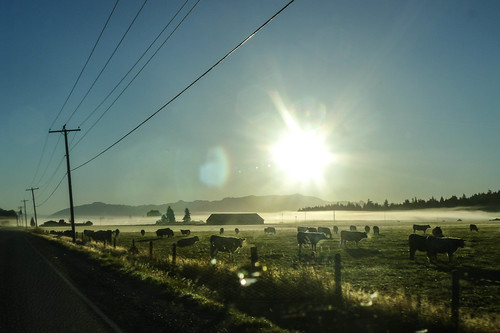 Skagit Valley Foggy Sunrise-002