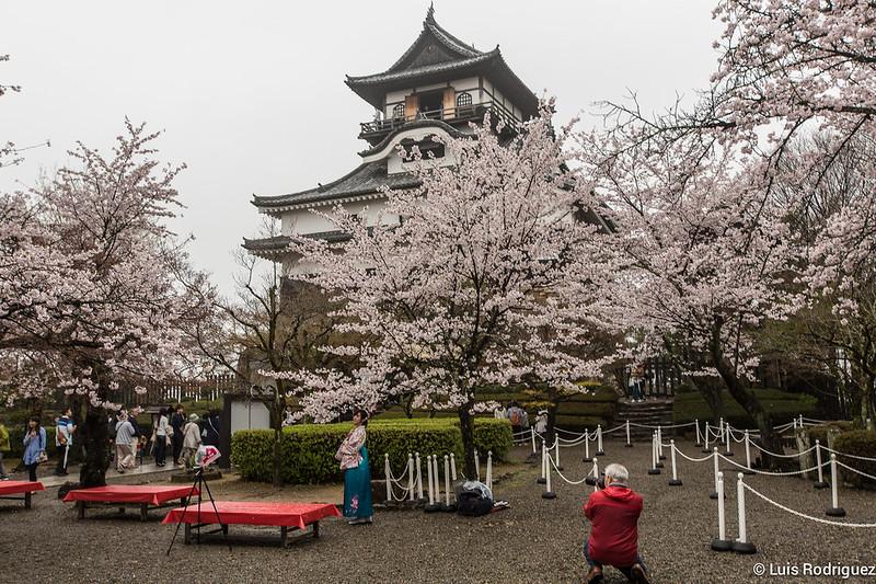 Inuyama-castillo-126