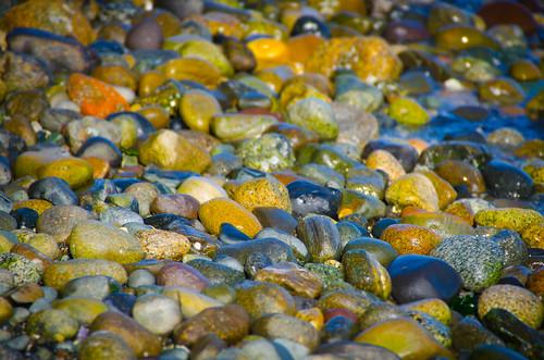 Samish Beach Rocks-003