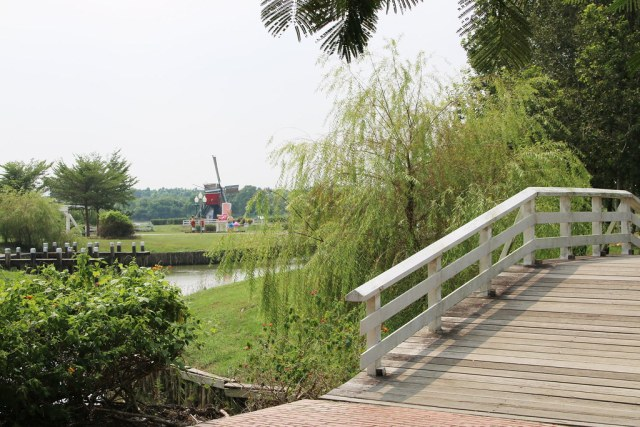 荷蘭村 (8)
