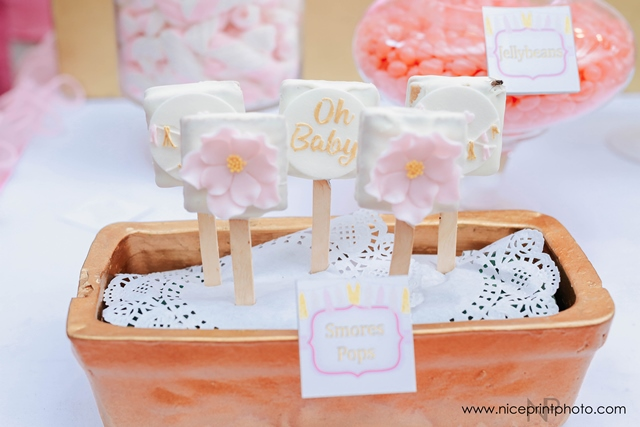pauleen luna pretty in pink baby shower sweets