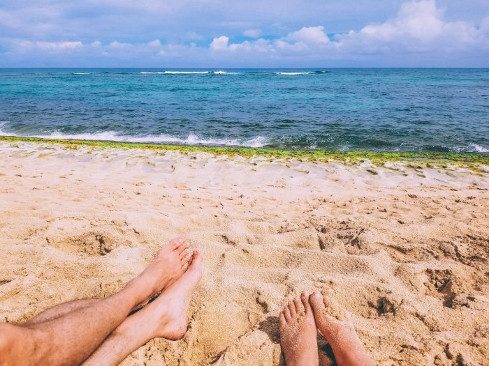 Oahu Beach Guide - A Perogy and Panda Hawaii Travel Guide - Laniakea Beach