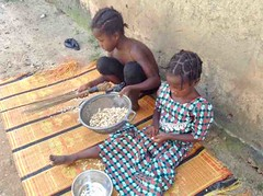 Young girls preparing sun dried cassava for Akpu, Ushafa Village, Abuja, Nigeria, #JujuFilms