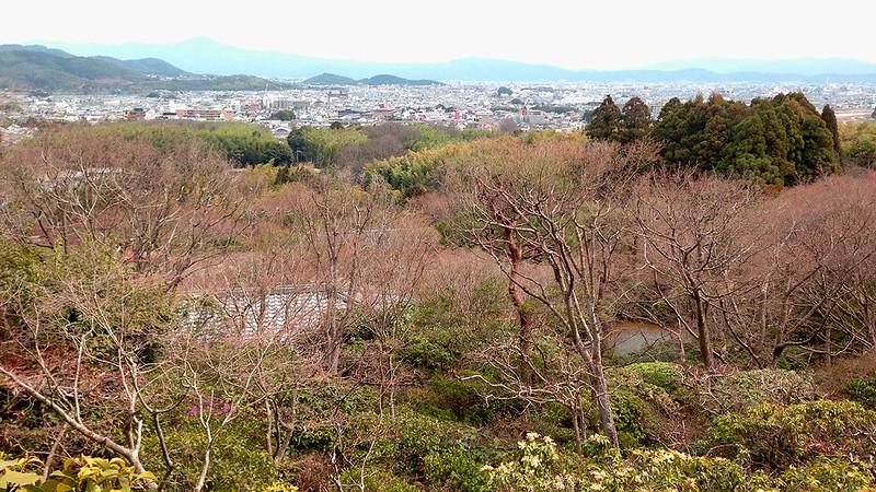 3 Hari Keliling Kyoto - Ohkouchi Sansou Garden 2