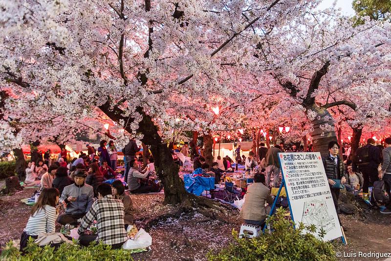 Parque-Tsuruma-Nagoya-13
