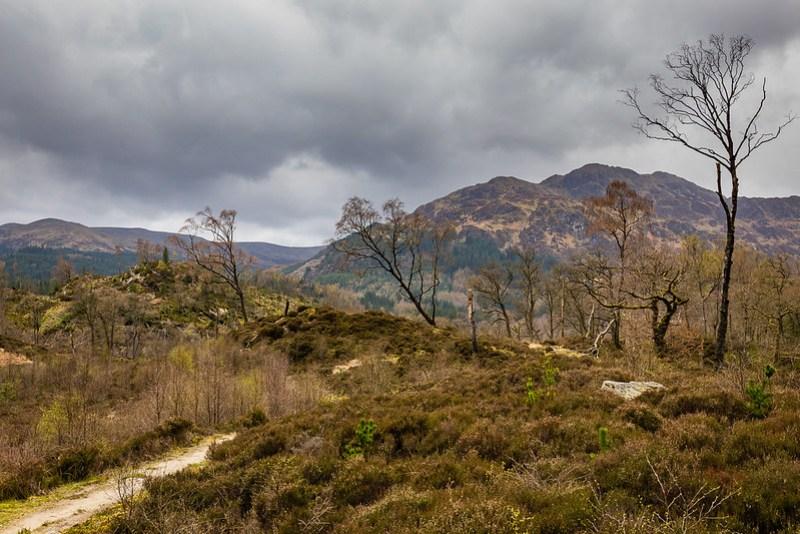 Entre Loch Katrine et Loch Achray - Trossachs - Ecosse