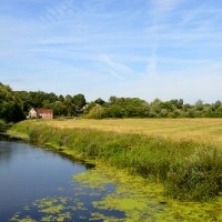 Trips 'n Travels: England - A walk in Sturminster Newton, Dorset