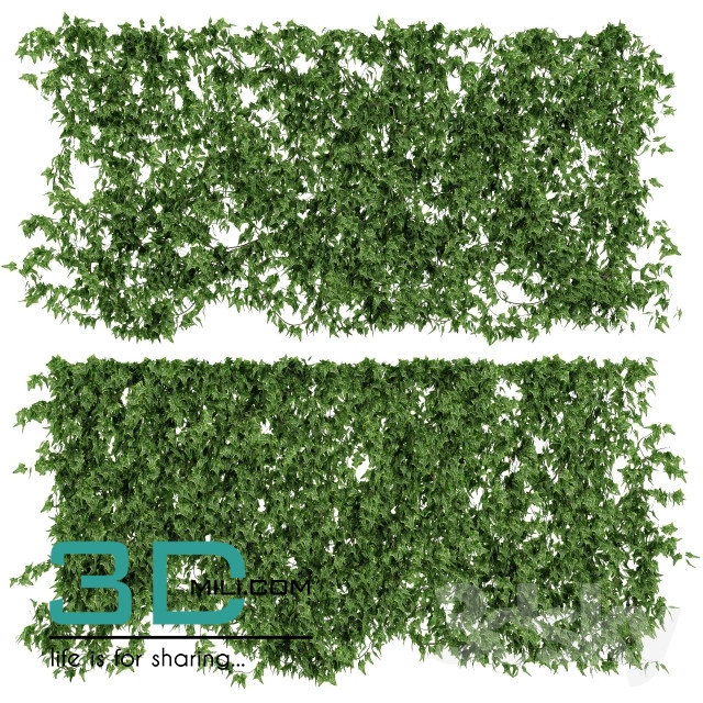 35 Wall With Ivy 3D Models For Download
