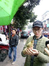 The amazing Xiao Chu, and a duckling