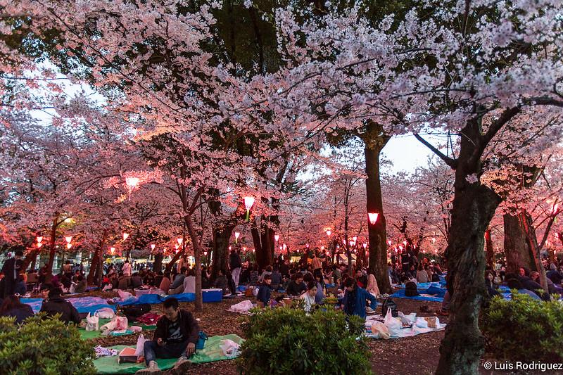 Parque-Tsuruma-Nagoya-8