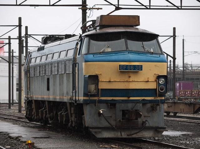 EF66 36
