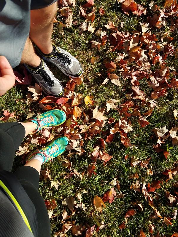 Patterson Park leaves