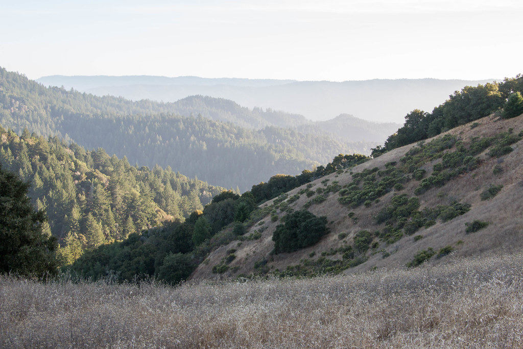 10.01. Skyline Ridge Open Space Preserve