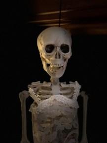 Ms Skeleton