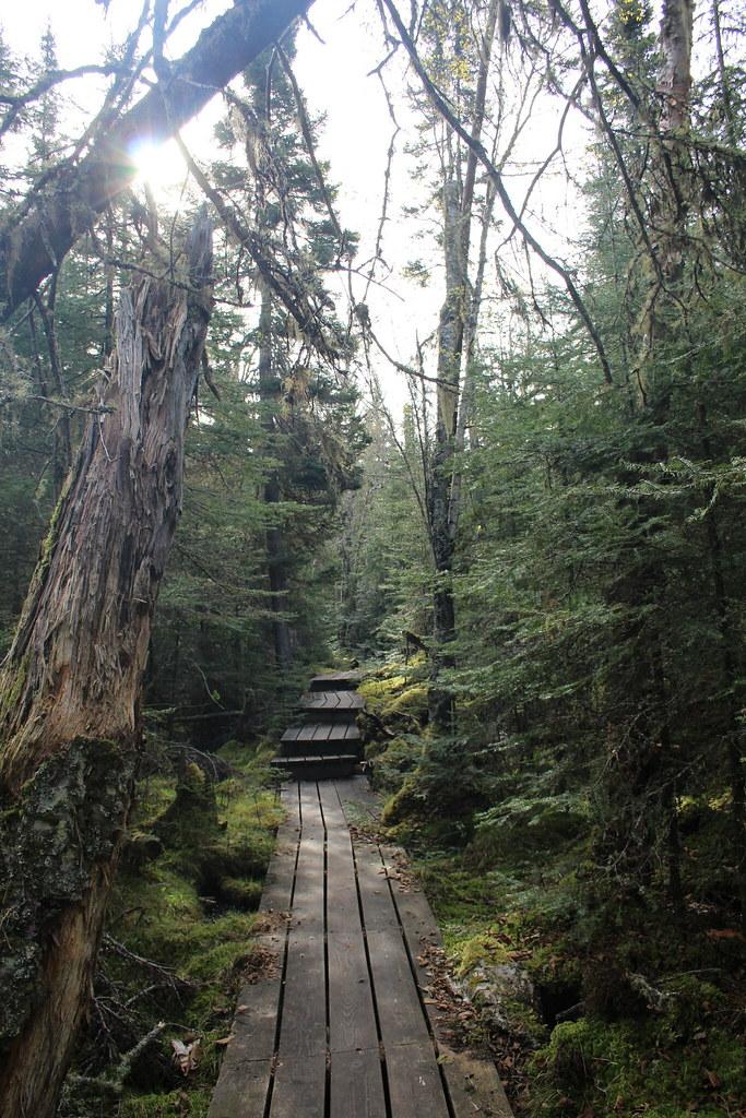 Pukaskwa Coastal Trail Adventure 5